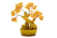 Денежное дерево с желтым жемчугом, фото 1