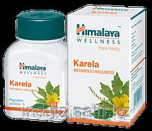 Карела, Гималаи (Karela, Himalaya), при диабете, 60 таблеток