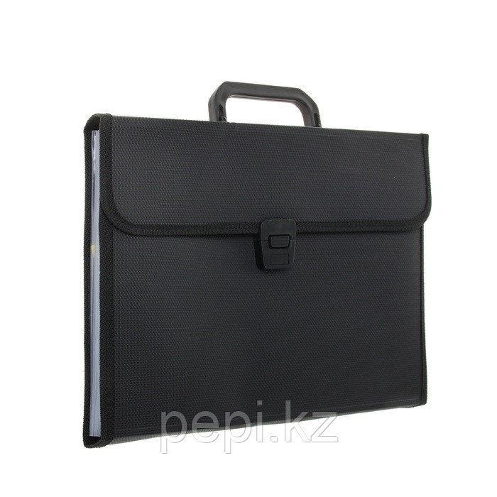 Папка - портфель