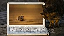 Ремонт ноутбуков в Алматы