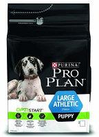 Pro Plan Puppy Large Athletic, Про План корм для щенков крупных пород с курицей, уп. 12кг.
