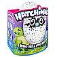 Интерактивная игрушка Hatchimals - Дракоша, зеленый / голубой, фото 7
