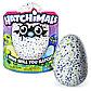Интерактивная игрушка Hatchimals - Дракоша, зеленый / голубой, фото 8