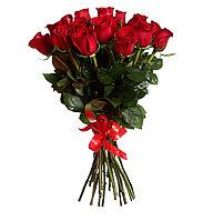 15 голландских роз (70см)