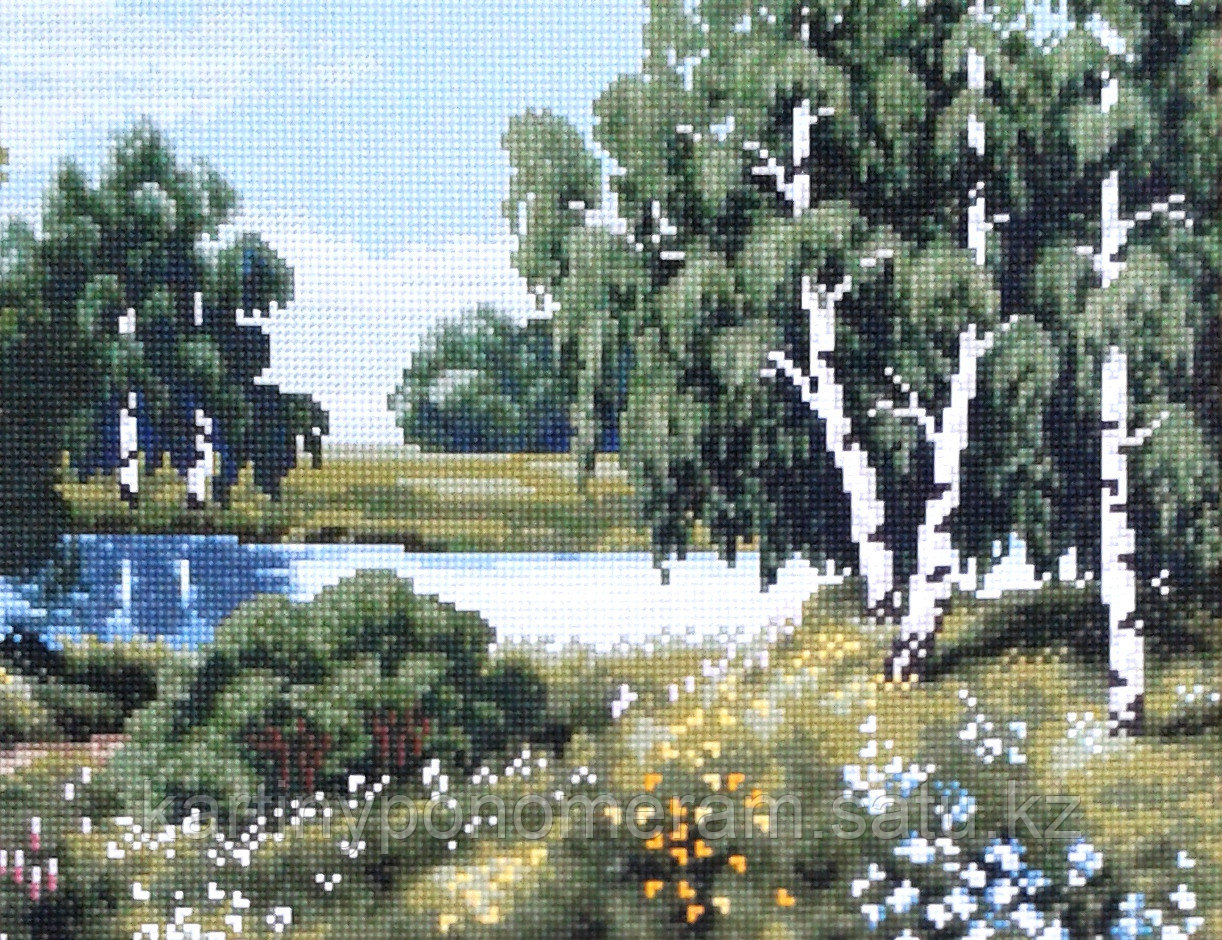 Картина стразами на подрамнике (30х40 см) C005