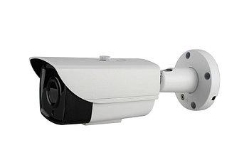 Всепогодная цифровая IP камера, 2.0 mpx, объектив 6mm, IR 60m
