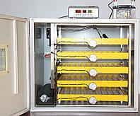 Инкубатор на 140 гусиных яиц