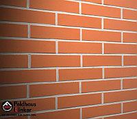 """Клинкерная плитка """"Feldhaus Klinker"""" для фасада и интерьера R480 terreno liso, фото 1"""