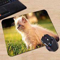 """Коврик для мышки """"Pad for Mouse с изображением """"Пушистый котенок в цветах"""",Dimensions:300mm x 250mm x 3mm"""""""