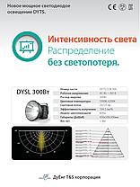 DYSL 300 Вт, фото 2
