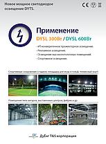 DYSL 300 Вт, фото 3