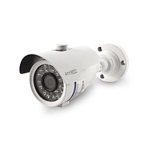 Уличная камера IP-E012.1(3.6)P_V2035