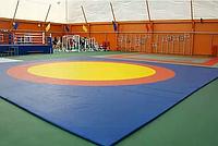 Ковер борцовский трехцветный 6 х 6 м с покрышкой, толщина 4 см