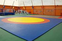 Ковер борцовский трехцветный 10 х 10 м с покрышкой, толщина 4 см