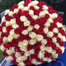 201 голландская роза (70см)