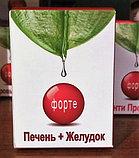 ПЕЧЕНЬ+ЖЕЛУДОК, капсулы № 60, фото 2