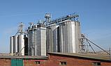 Стационарные зерносушилки Strahl (Штраль), фото 2