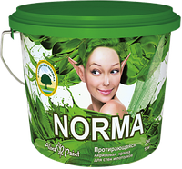 Водоэмульсионные протирающиеся краски Alina Paint NORMA  25 кг