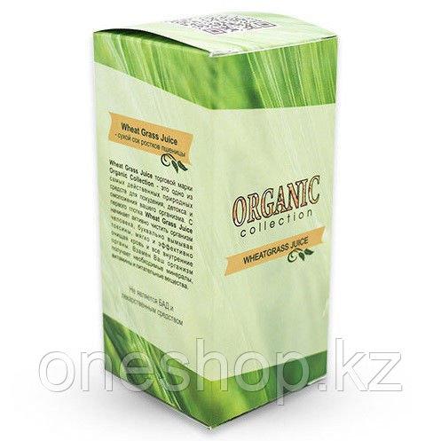 Детокс средство Detox Wheatgrass Organic Collection (сухой сок ростков пшеницы)