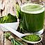 Витамины для кожи Wheatgrass Organic Collection (Витграсс), фото 4