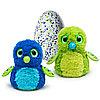 Интерактивный питомец Hatchimals - Дракоша, зеленый / голубой