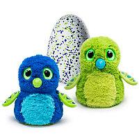 Интерактивный питомец Hatchimals - Дракоша, зеленый / голубой, фото 1