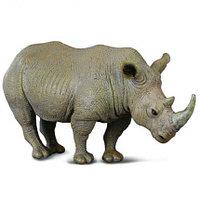 Белый носорог, L