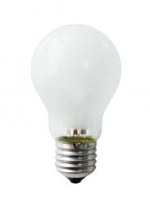 Е14 42Вт 2900К Лампа галогенная ТМ Etalin шарик матовый