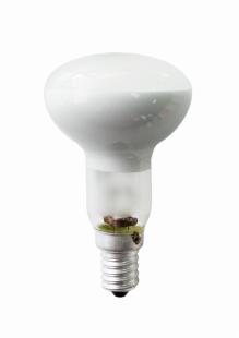 Е14 42Вт 2900К Лампа галогенная ТМ Etalin рефлектор R50