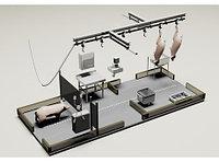 Модуль убоя свиней, 30 голов смена