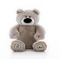 Luv'n Learn Интерактивный плюшевый медведь серый, фото 1