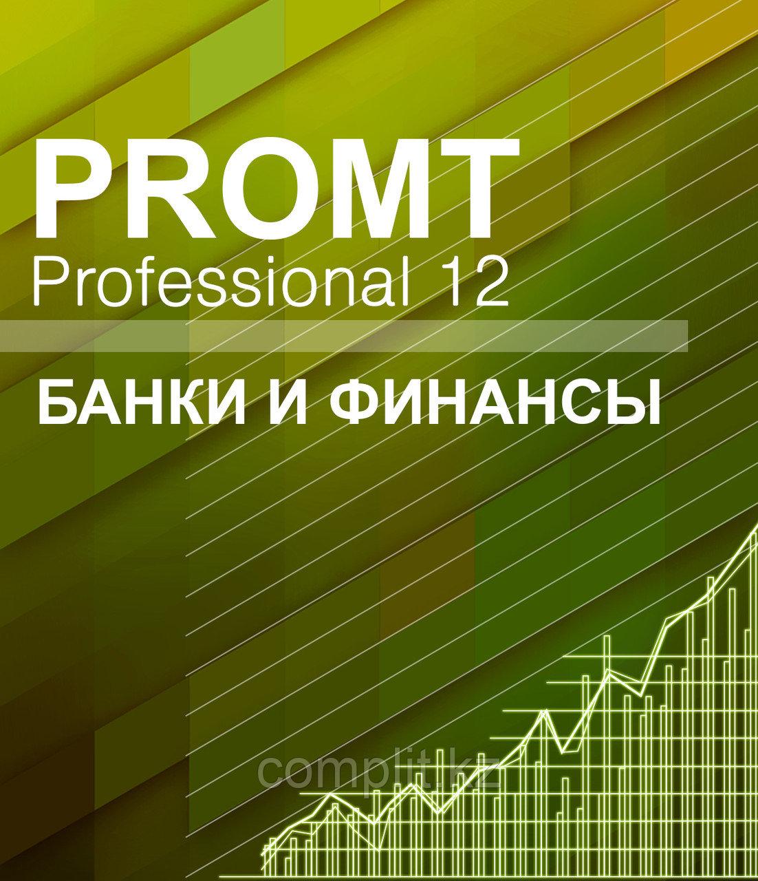 PROMT Professional 12 Банки и финансы