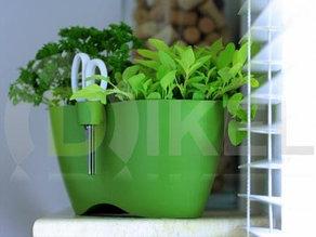 Горшок для зелени с ножницами Limes dublo-DLD 250 производства Польша prosperplast.