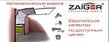 Гаражные ворота Zaiger 2500 х 2200, фото 3