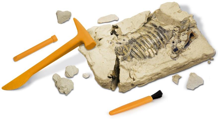 Набор для творчества, раскопки динозавра - фото 2