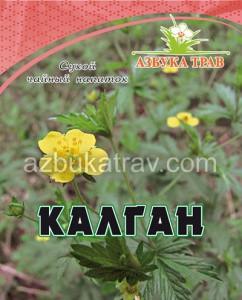 Калган (лапчатка прямостоячая), корень, 20гр