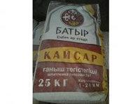 Гипсовая шпатлевка 2в1 КАЙСАР