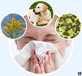 Аллергия. Комплекс 1