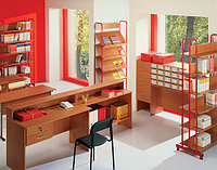 Прочая школьная мебель