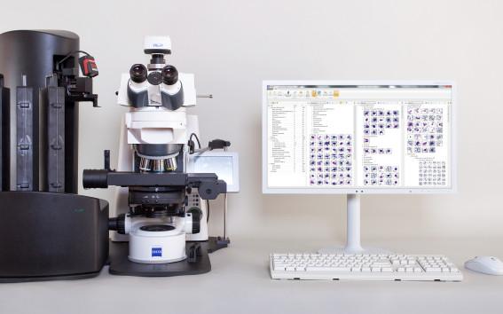 Система: Эффективное решение для больших лабораторий Vision Hema® Ultimate