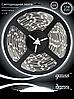 Светодиодная лента Gauss 5050/30-SMD 7.2W 12V DC холодный белый (блистер 5м)