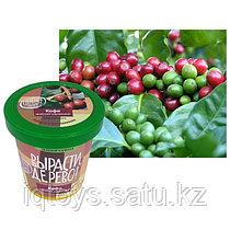Набор Вырасти, дерево! Кофе арабский карликовый