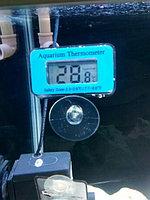 Термометр для ванны аквариума и холодильных витрин, фото 1