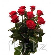 9 роз (70см)