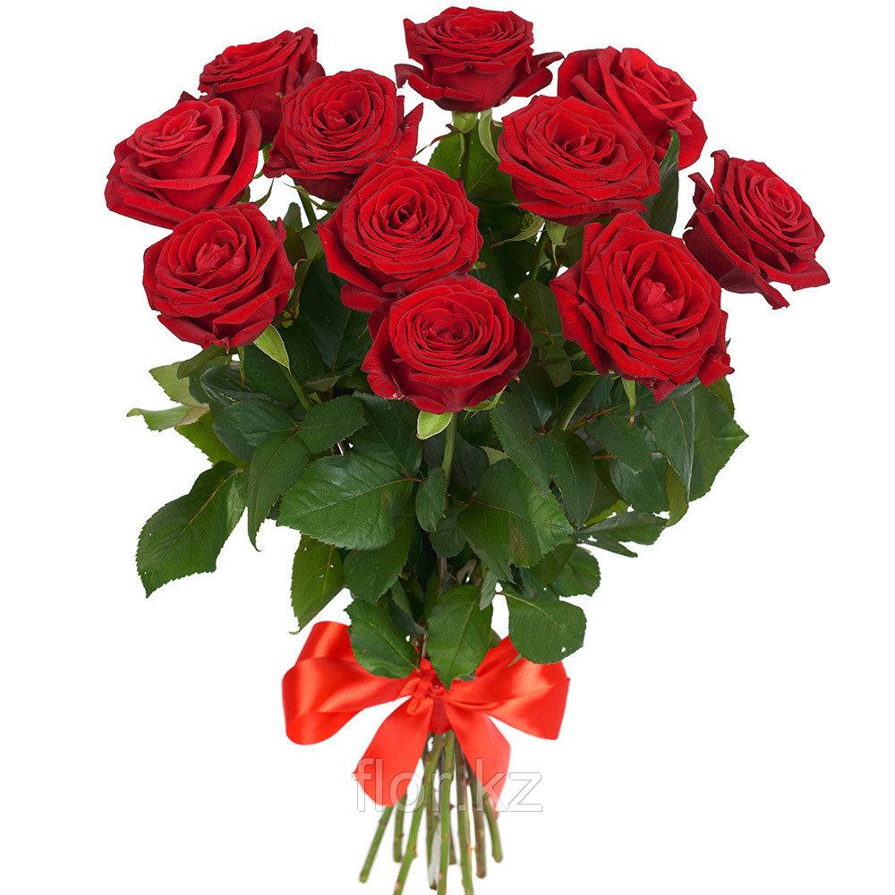 11 роз (70см)