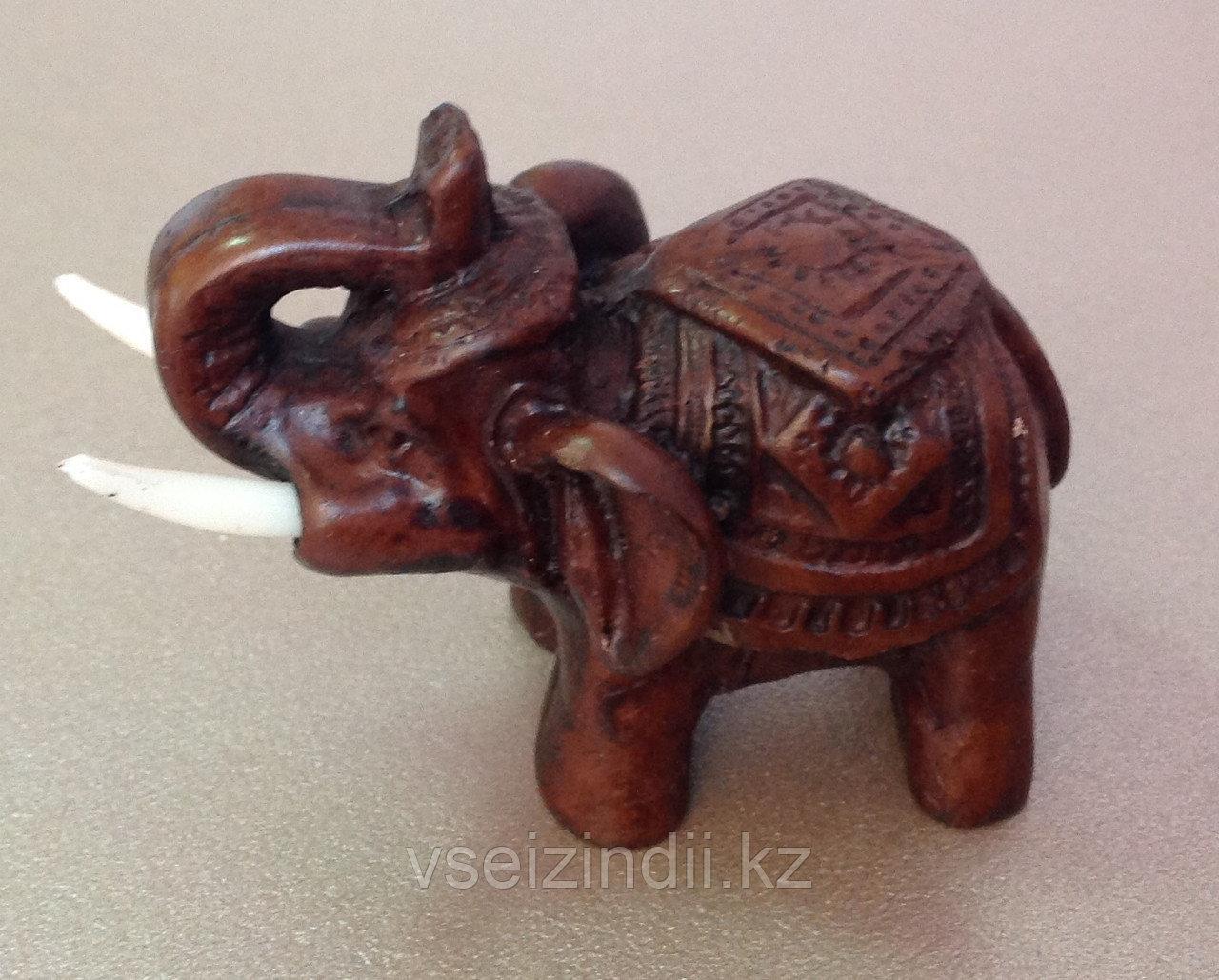 Слон тайский с бивнями - 3