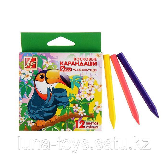 Карандаши восковые шестигранные ZOO, 12 цветов