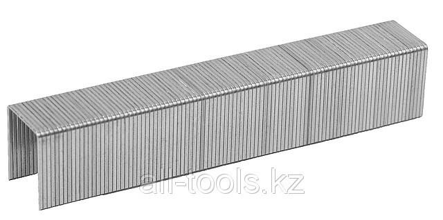 Скобы ЗУБР «ЭКСПЕРТ» закаленные, тип 53, красные, 14мм, 1000шт