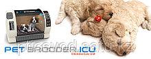 Брудер Rcom BL-600N для домашних питомцев