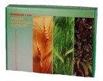 Гербарий Кормовые растения (20 видов)